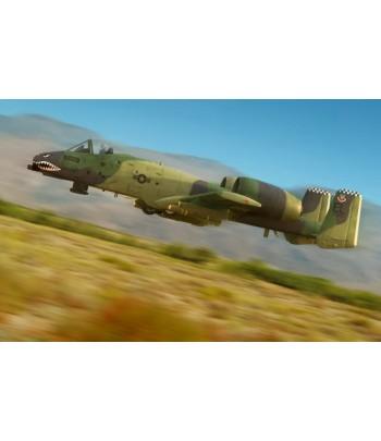"""Самолет A-10A """"THUNDERBOLT"""" II HOBBY BOSS 80323"""